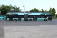 autobus_pkm