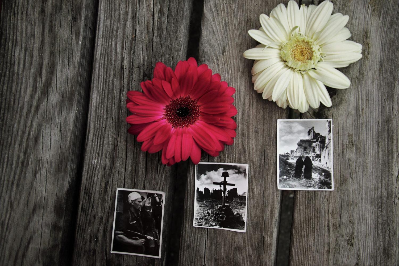 kwiaty-ze-zdjęciami