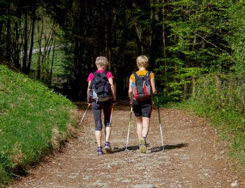 Wracamy z treningami Nordic Walking