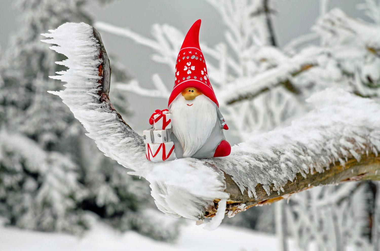 zimowy-skrzat