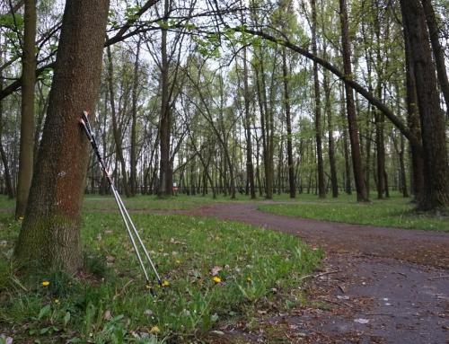 """Podsumowanie  treningów grupy Nordic Walking """"Dobra Naprzód"""" – rok 2020"""